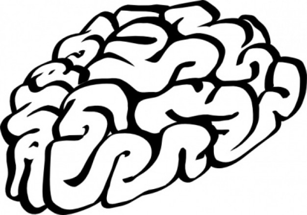 cartoon-brain-outline-clip-art_411969.jpg